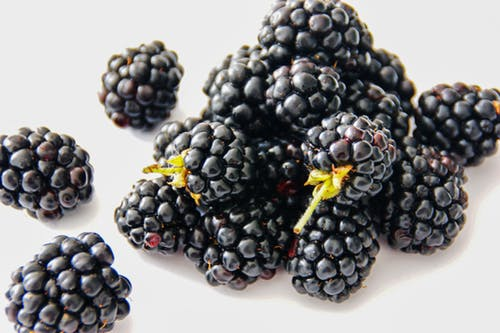 blackberries Picture